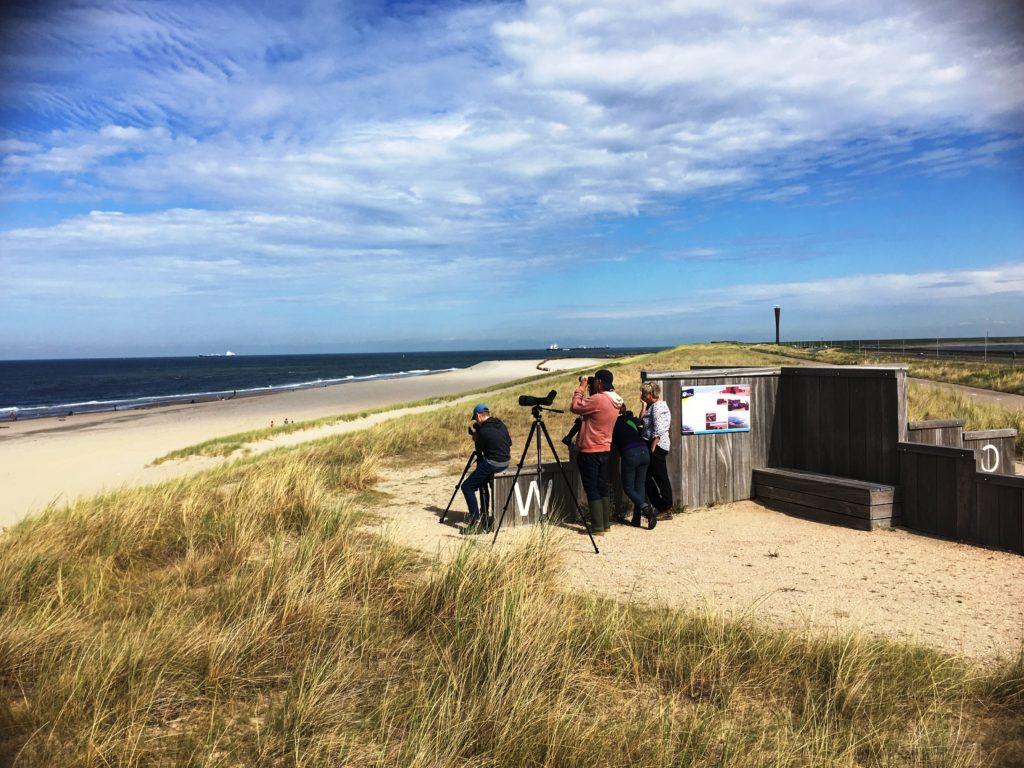 Trektelpost Maasvlakte II (foto Stef Strik)