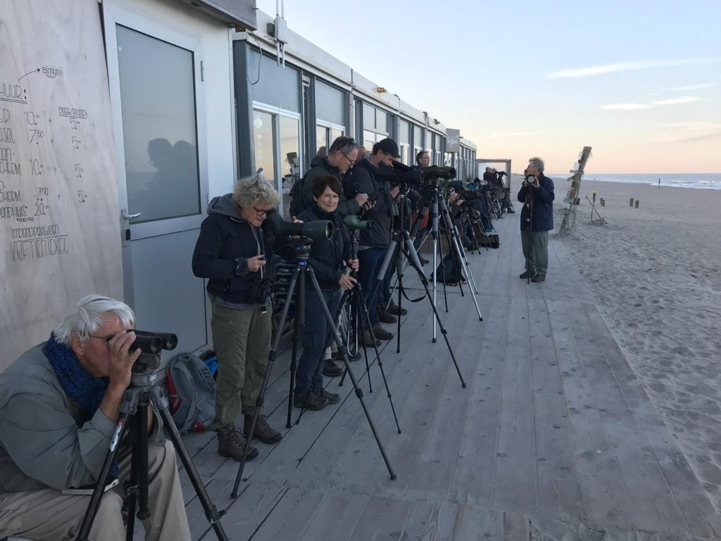 Birdwatchers of whalewatchers? (Brenda Smeele)