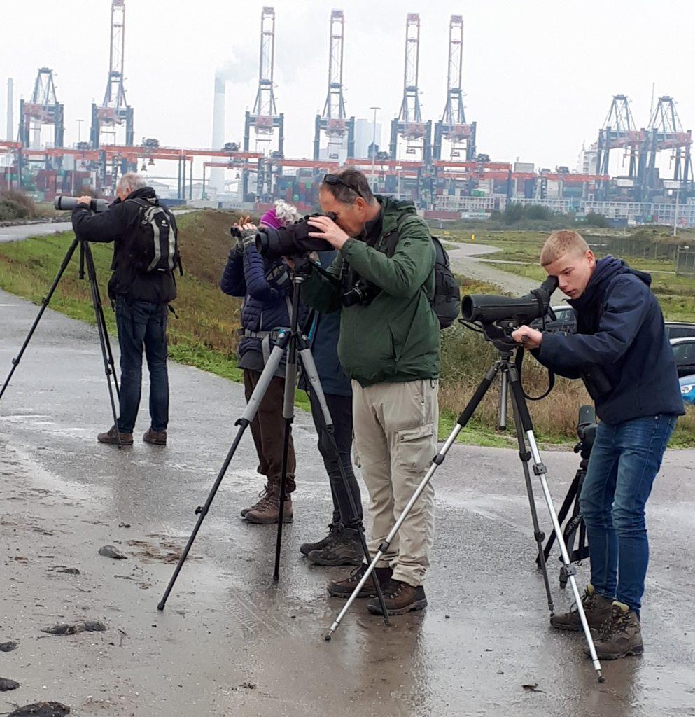 Maasvlakte 2019/10/03